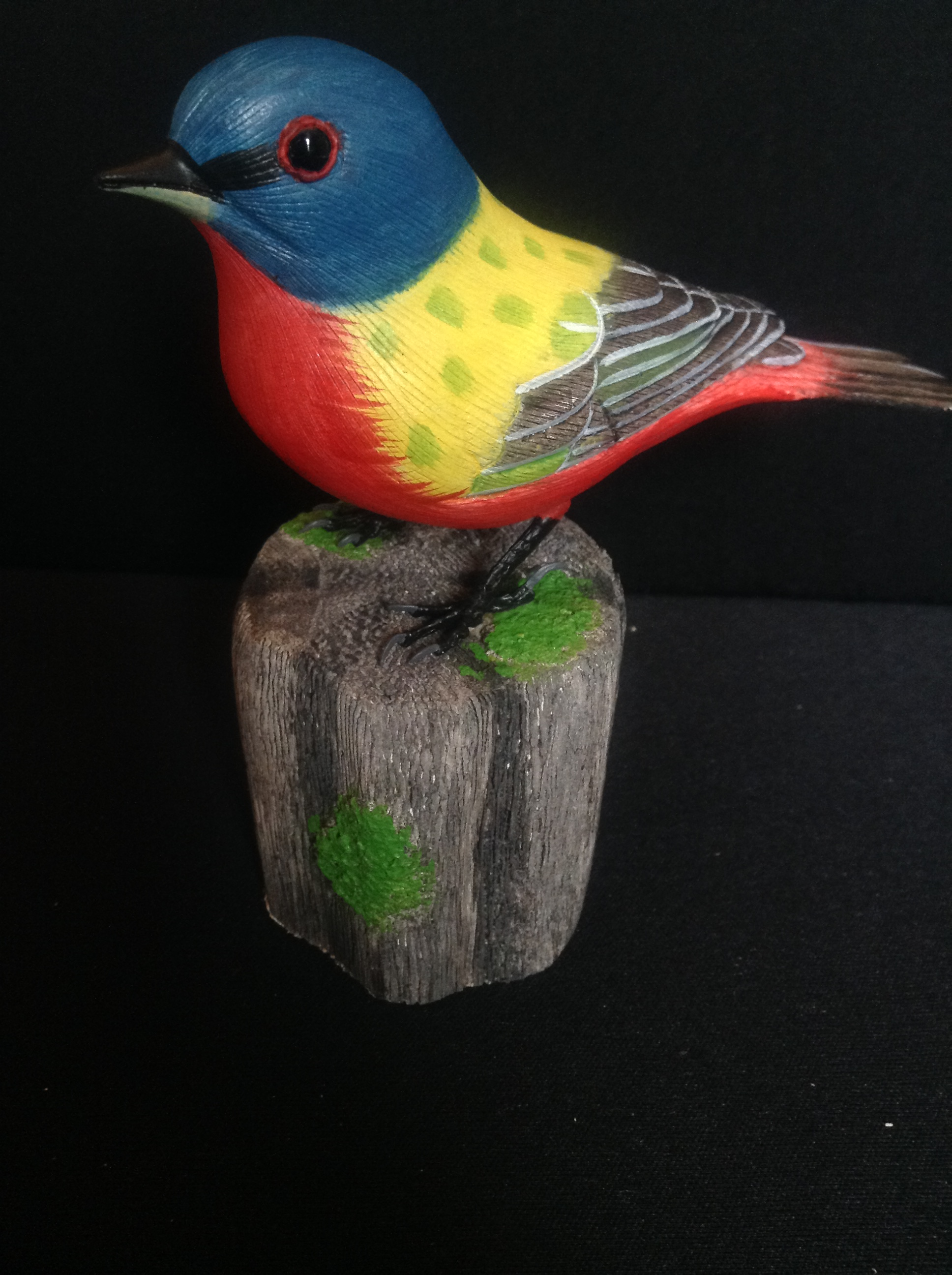 Painted_bunting_4e9ef5927f982.jpg
